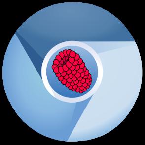 FullPageOS - valmis käyttöjärjestelmä info-näyttöä varten